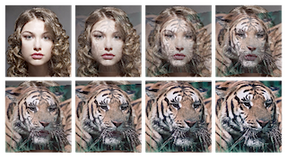 8 pictures showing how a woman turns into a tiger